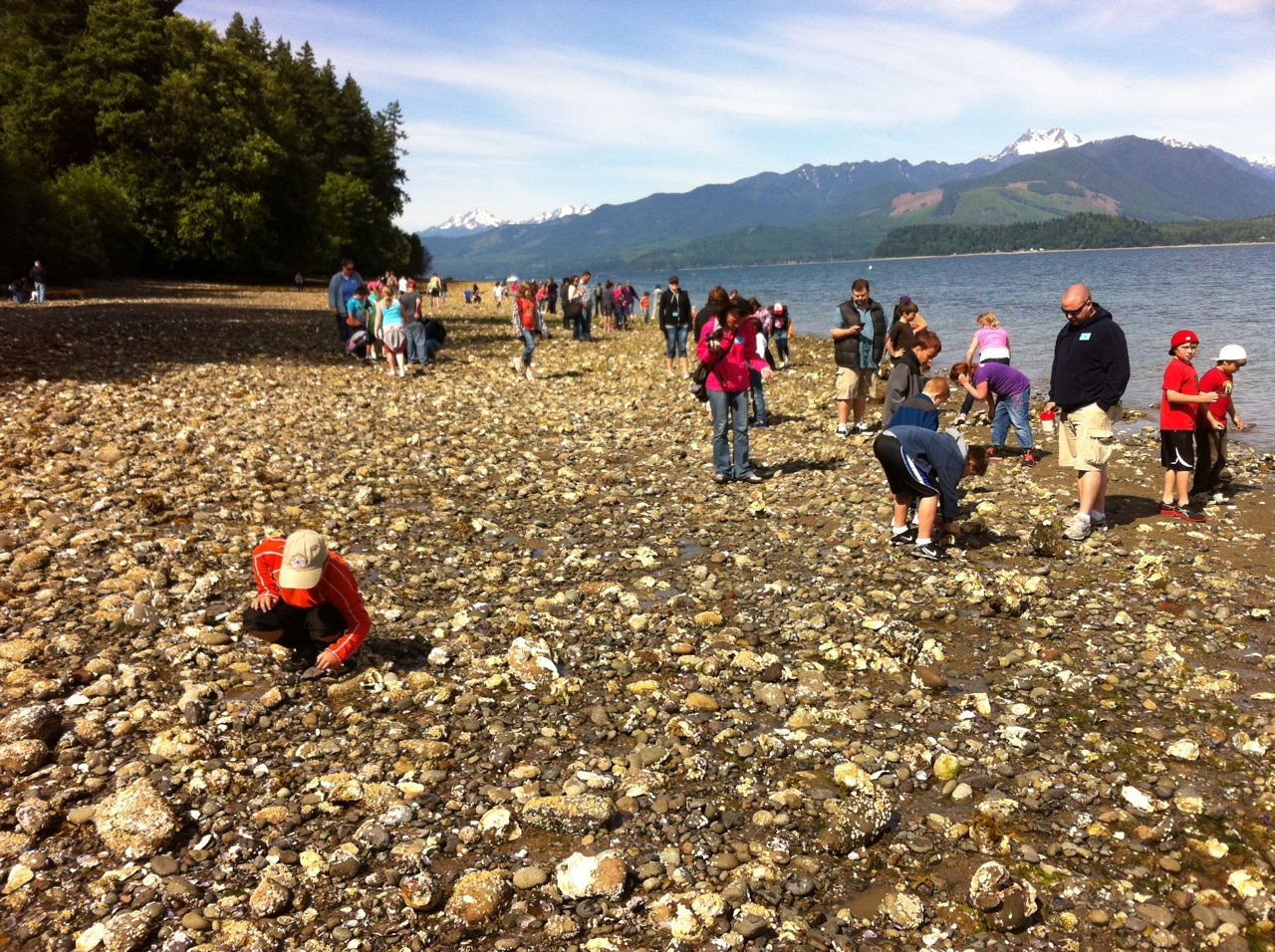 Students and families at Scenic Beach State Park. Photo: Jeff Adams