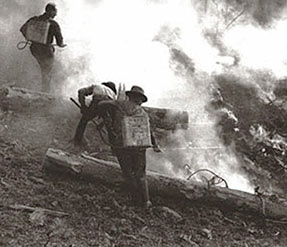 Black Water Fire of 1937. U.S. Forest Service photo.