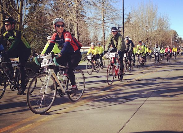 Cyclists ride along Winslow Way during the 2015 Chillly Hilly on Bainbridge Island. Photo: Tristan Baurick/Kitsap Sun