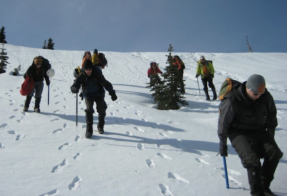 "Students in Olympic College's mountaineering course practice ""plunge stepping"" at Hurricane Ridge in 2009. (Photo courtesy of Mike May)"