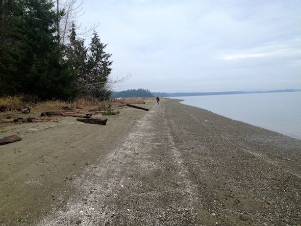 Fudge Point's 3,000 foot-long beach. Tristan Baurick/Kitsap Sun