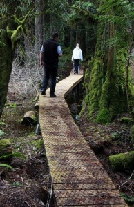 Without permits, a boardwalk was built on state land destined to become a county park.