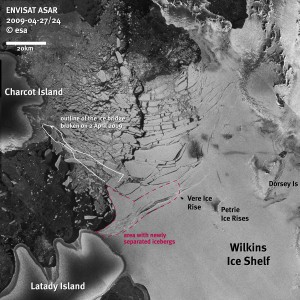 <i>The demise of an ice bridge that connected Charcot and Latady Islands has destabilized the front of the Wilkins ice shelf. The margins of the collapsed ice bridge are shown in white.</i><br><small>Satellite image courtesy of ESA</small>