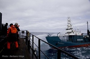 <em>Close encounter between Steve Irwin and Shonan Maru 2</em> <small>Photo courtesy of Sea Shepherd</small>