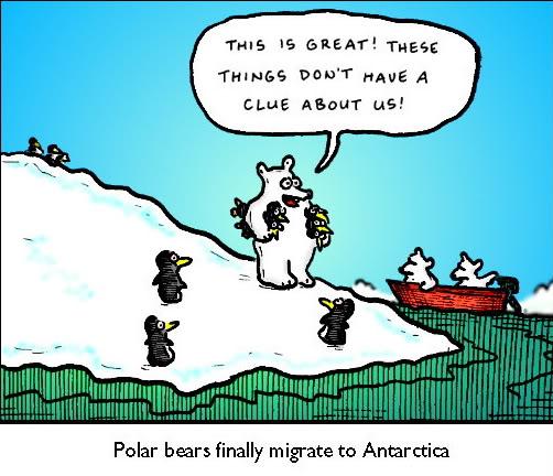 penguins and polar bears never meet a stranger