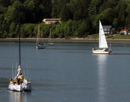 Sailors take advantage of the nice weather last week on Liberty Bay. Kitsap Sun photo by Meegan Reid.