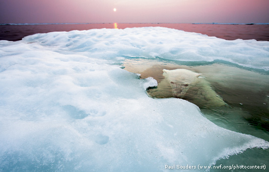 Paul Souders' winning photo.