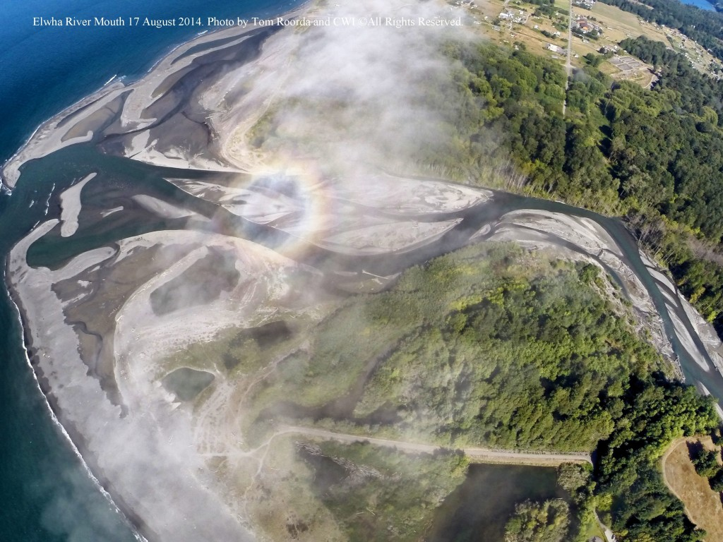 Tom Roorda of Roorda Aerial photography captured this image showing the ongoing buildup of sediment at the mouth of the Elwha River. Photo by Tom Roorda