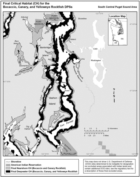 Critical habitat for rockfish in Central Puget Sound NOAA map