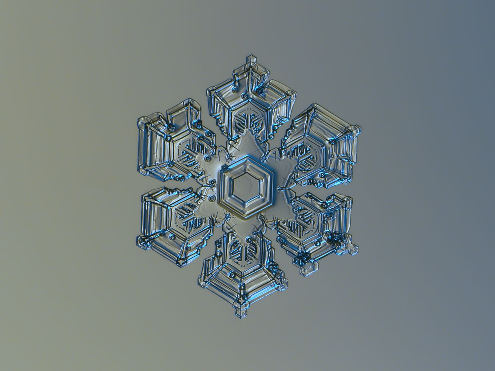 amusing monday have you ever seen a snowflake so fine watching