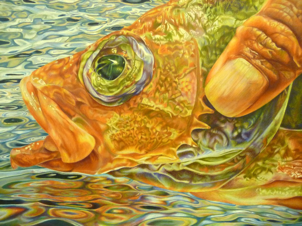 "One of last year's winning entries, ""Catch and Release,"" was created by 11th grader Sayo Watanabe of Elmwood Park, NJ."
