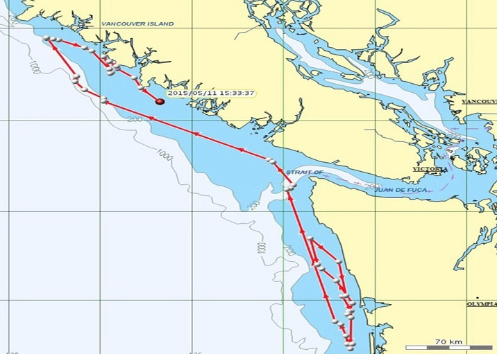Nyssa (L-84) and his entourage traveled north into Canadian waters the first week of May. NOAA map