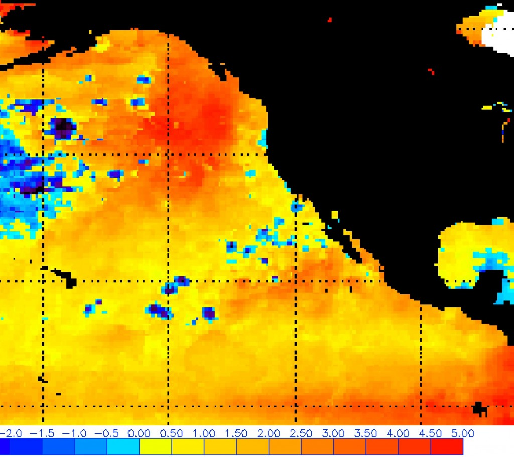 The colors reveal that sea surface temperatures are significantly higher than the long-term average. Click on the map to view a six-month animation. Graphic: NOAA OSPO