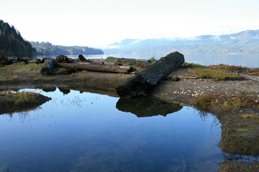 Stavis Natural Resources Conservation Area on Hood Canal. DNR photo