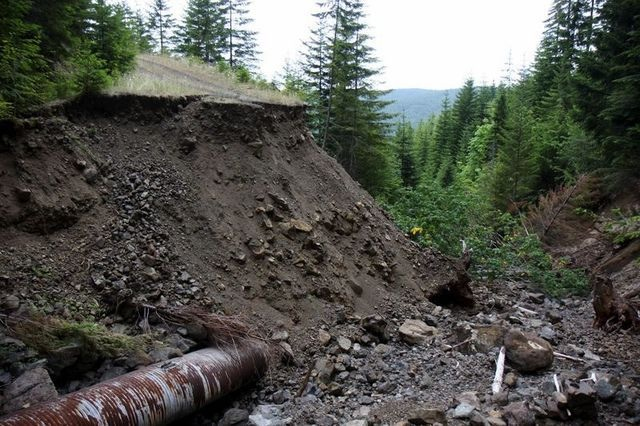 When culverts fail, streams can become inundated with sediment. The Forest Service has been engaged for 20 years in removing unneeded roads. Photo: Kitsap Sun