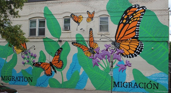 Monarch butterfly mural in Minneapolis, Minn.