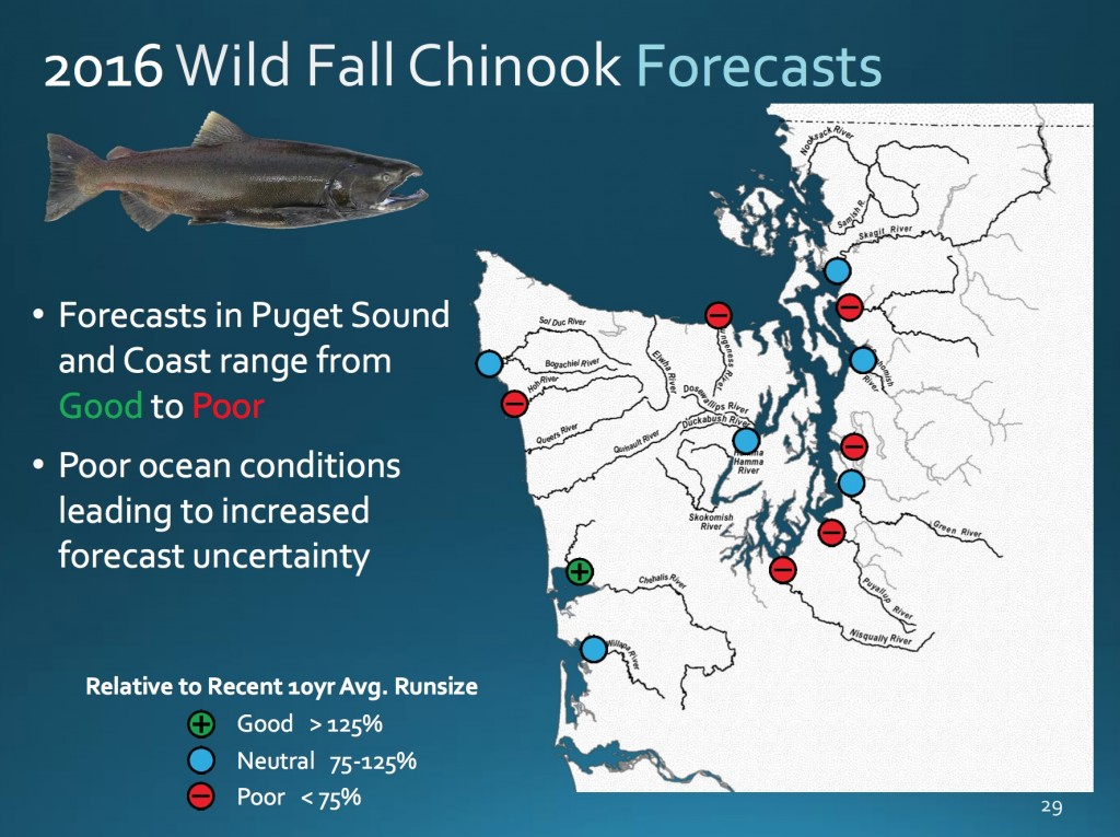 2016 chinook forecast