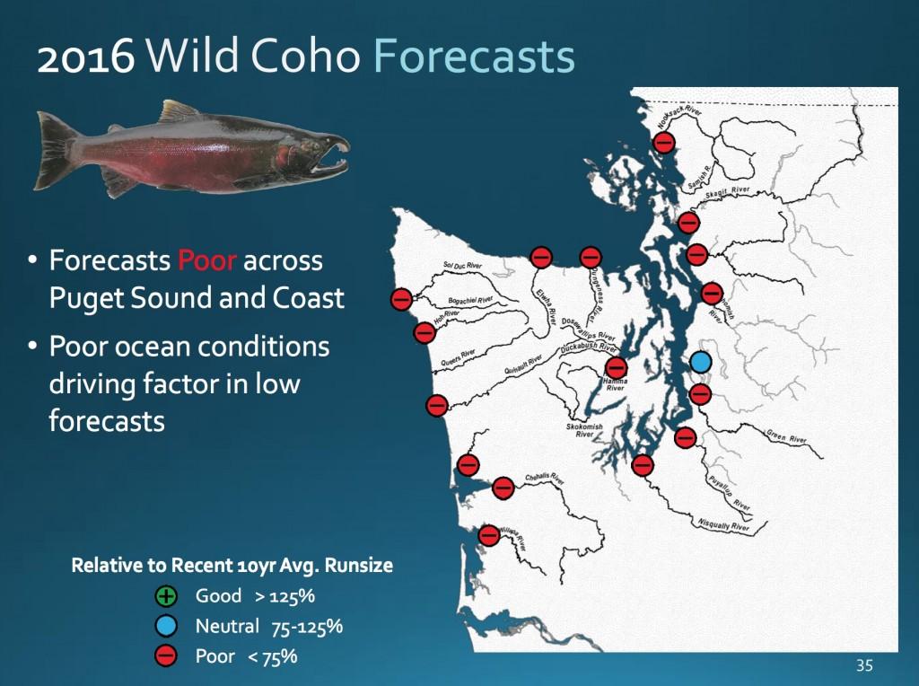 2016 coho forecasts