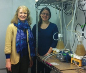 Heidi Gough, left, and Nicolette Zhou with a table-top treatment plant in the lab. UW photo