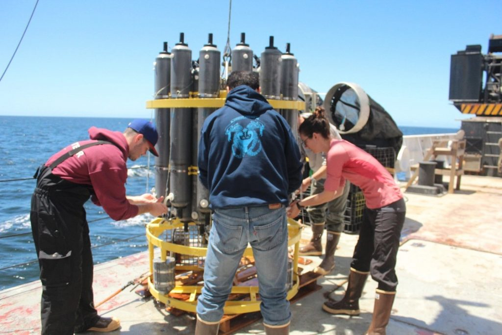 The research crew takes water samples using the CTD rosette off the coast of Baja California. Photo: Melissa Ward