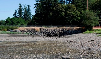 Twin culverts before construction begins. Photo: Kitsap County