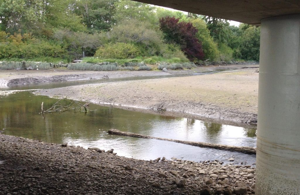Looking upstream from under the new bridge. Photo: C. Dunagan