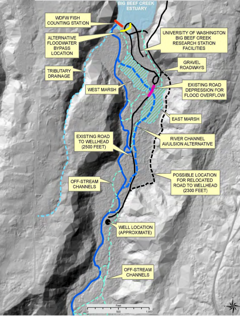 Officials agreed to close the well, so a relocated road will not be needed. Note the off-stream channels and the ability for the stream to change course. Map: Hood Canal Salmon Enhancement Group