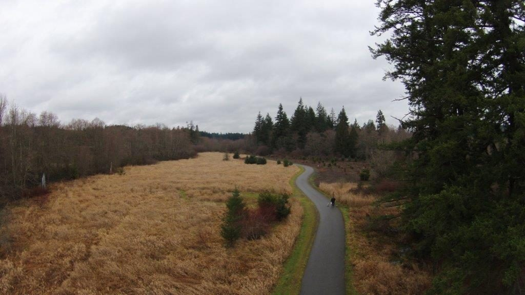 Before photo: This was the farmers field as it appeared before restoration. Photo: Kitsap County Public Works
