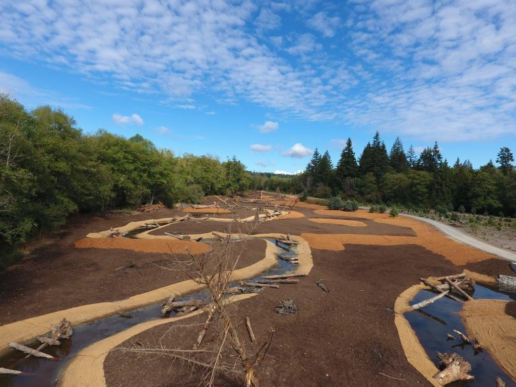 A restored Clear Creek floodplain (before plantings) north of Waaga Way in Central Kitsap. Photo: Kitsap County Public Works