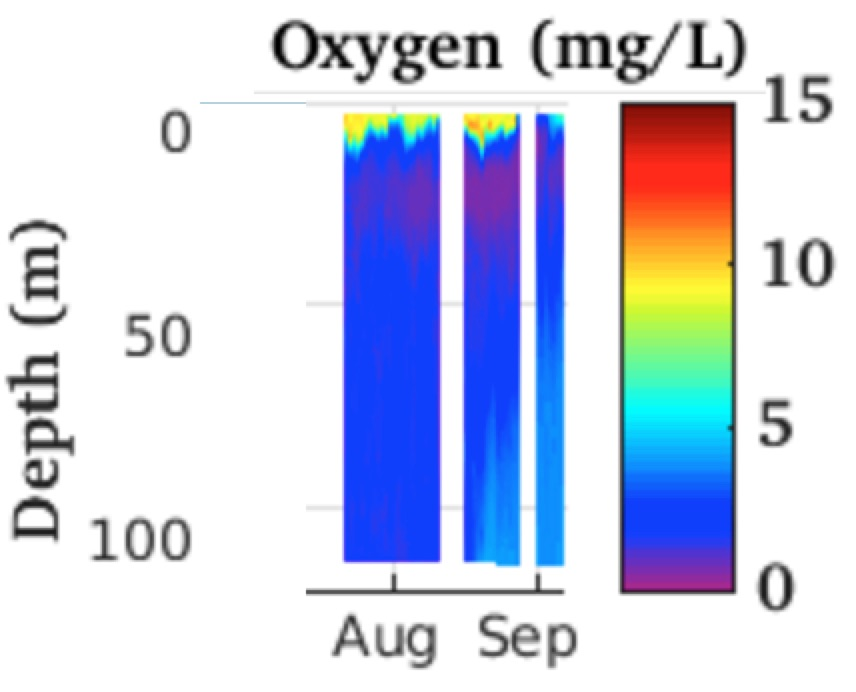 Oxygen Watching Our Water Ways