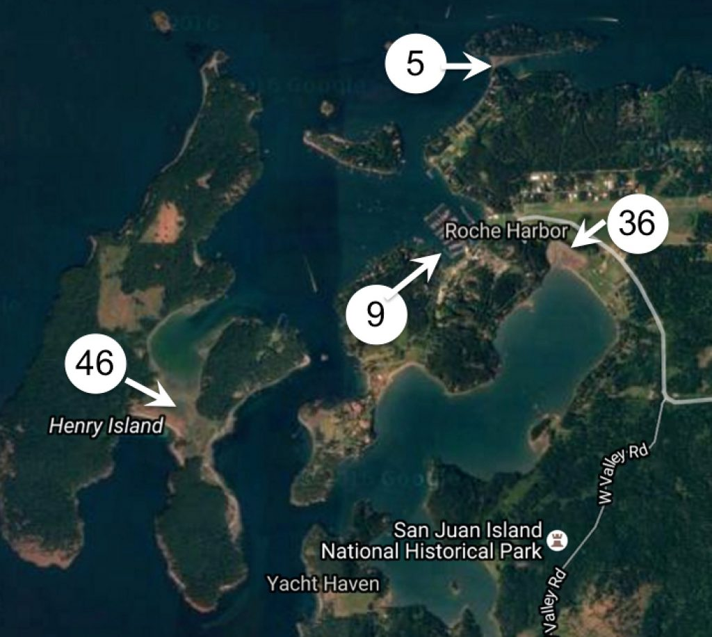 These are the locations and number of traps placed on Monday in the northern San Juan Islands. Map: Washington Sea Grant