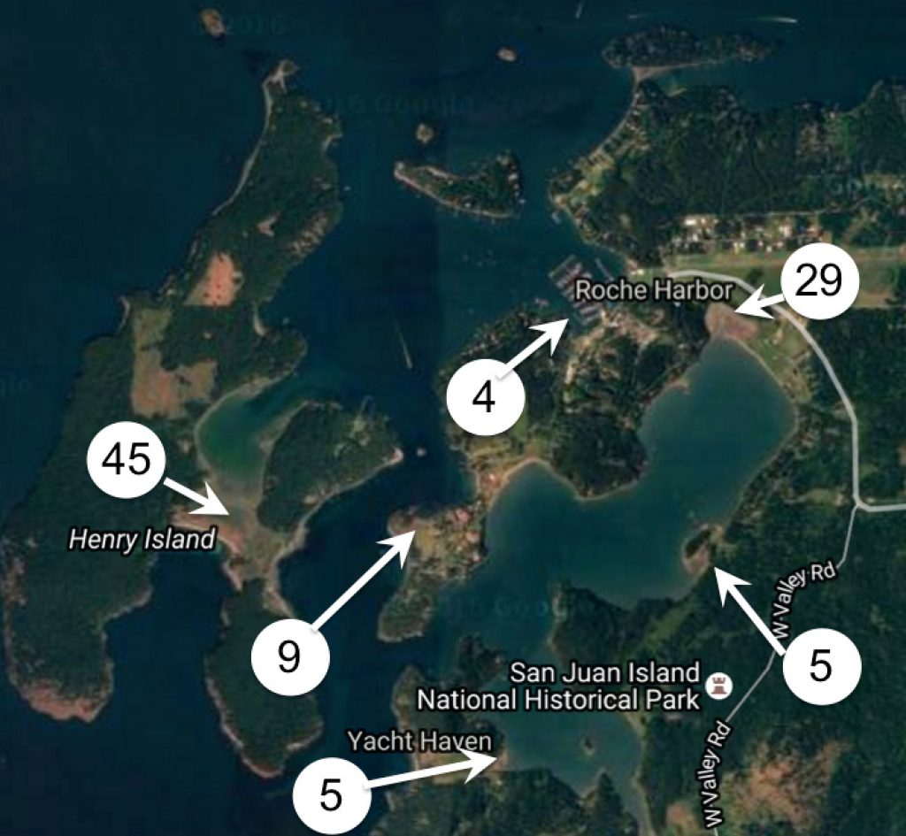 These are the locations and number of traps placed in the northern San Juan Islands on Tuesday. Map: Washington Sea Grant