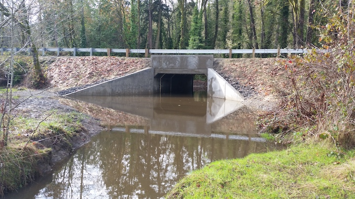 A new culvert under Southworth Drive improves passage for salmon in Harper Creek. WDFW photo