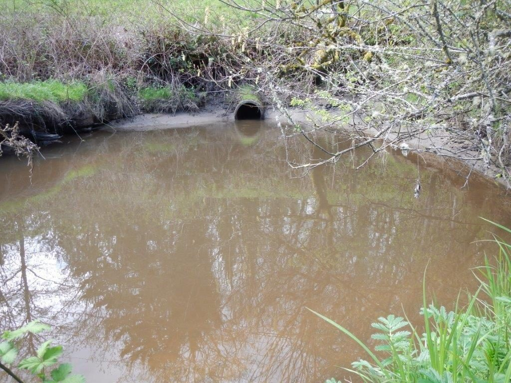 The old culvert under Southworth Drive was an impediment to salmon passage. // Photo: WDFW