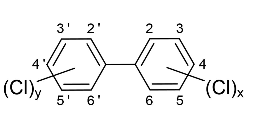 The basic structure of polychlorinated biphenyls, where the number and location of chlorine atoms can vary.