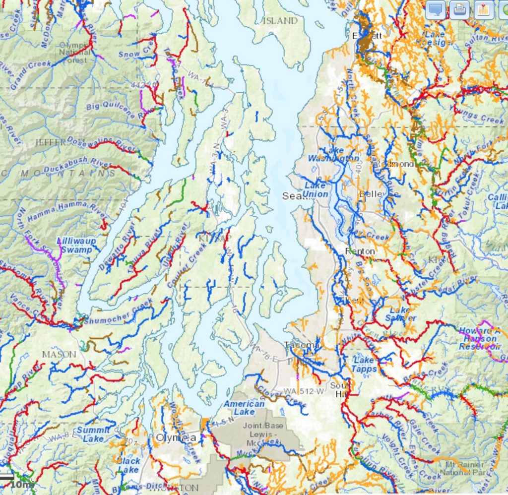 Winter steelhead streams in Puget Sound from SalmonScape. Map: Washington Department of Fish and Wildlife